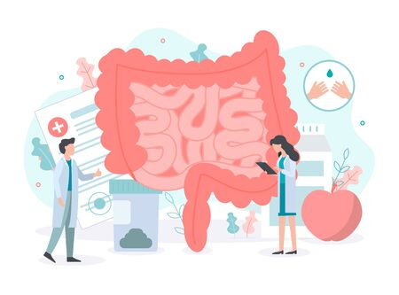 Diagnosis and treatment of the bowel: intestinal inflammation, enteritis, colitis, dysbacteriosis. Intestine health. Medical concept with tiny people. Flat vector illustration.