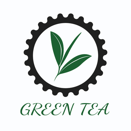 three colors: Green tea concept by use three colors and ground white.