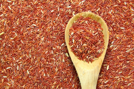 arroz blanco: Rojo jazm�n arroz y cuchar�n en el fondo de arroz