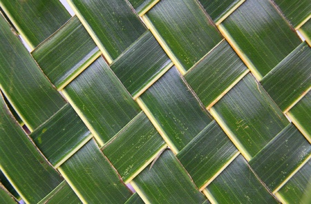 Woven green coconut leaves texture