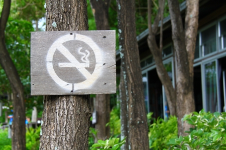 No smoking sign in park Stock Photo - 15983974