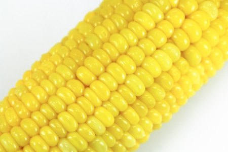 Ear of Sweet Corn close up