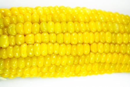 Boiled chopped corn cob isolated on the white photo