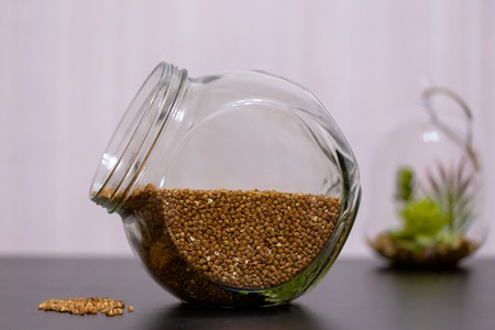Healthy food buckwheat in a glass jar is on the table with green plant. Stock Photo
