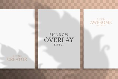Shadow Overlay Plant Vector Mockup A4 Paper sheets. Shadows overlay effects Of A leaf on sand background in a modern minimalist style.
