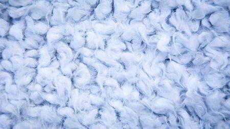 Close-up of wool, karakul, fur texture background. Fur background. purple cotton, sheepskin texture.