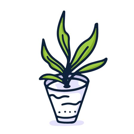 Home plant hand draw icon in cartoon style on white background. Doodle vector illustration