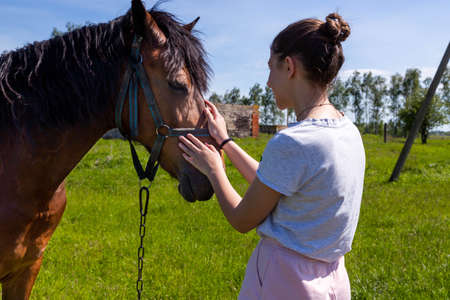 Young cheerful teenage girl stroking brown horse nose.