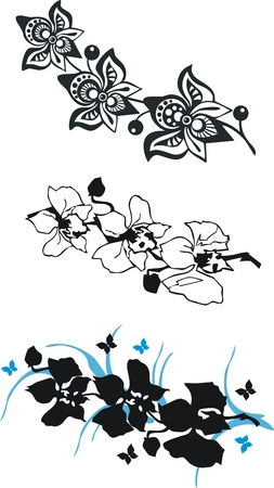 Black orchid set in graphics Vector