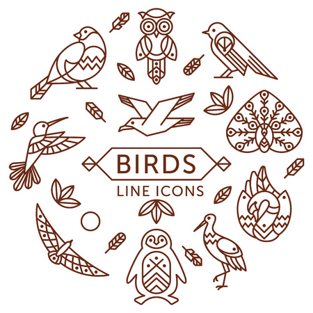 a feather: Set of outline birds icons arranged in circle