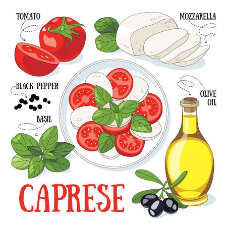 Caprese, tradycyjne włoskie sałatki i jego składniki. kuchni śródziemnomorskiej. Ilustracje wektorowe