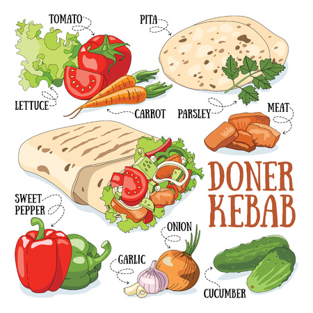 garlic bread: Doner kebab and its ingredients. Fast food vector illustration.