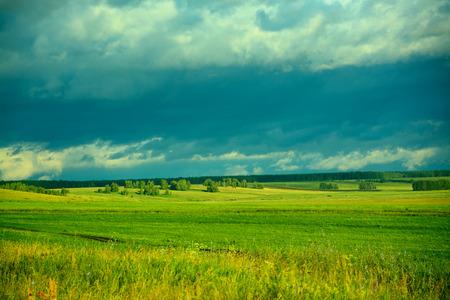 siberia: Summer in Siberia