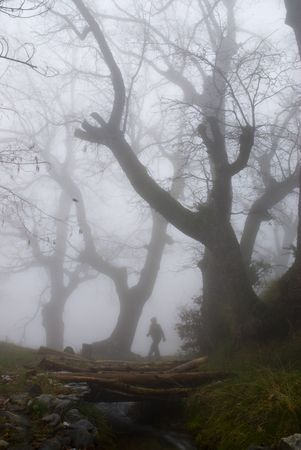 Man walking in a dark and mysterious foggy forest  photo