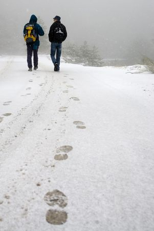 Unrecognizable people walking on blizzard snow Stock Photo - 5895914