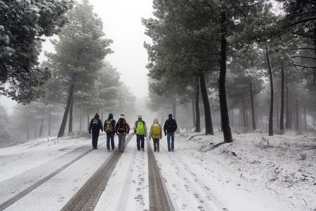 Group of unrecognizable people walking on snow landscape photo