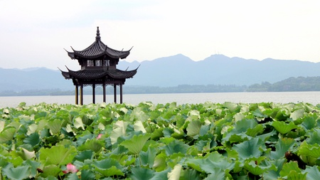 Here is the picture of West Lake in Hangzhou province in China  The lake name is Xihu  免版税图像