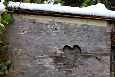 heart pattern on the wood photo