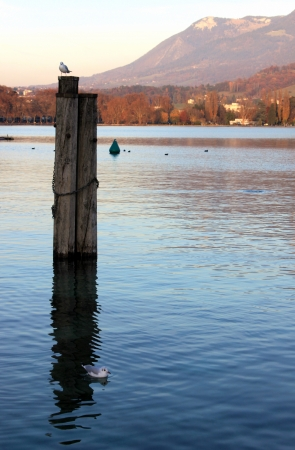 pilings: Marine pilings in Annecy lake Stock Photo