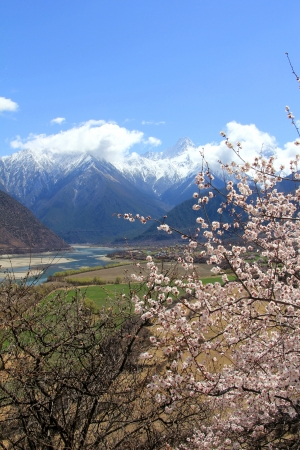 xanadu: Nyingchi Prefecture in Tibet spring, China