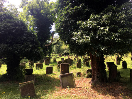 Historical Jewish Cemetery in Worms