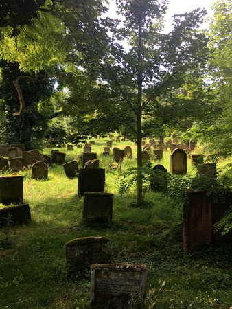 jewish: Historical Jewish Cemetery in Worms