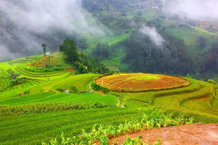 land scape of rice terrace Mu Cang Chai VIETNAM in rain season