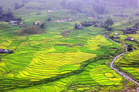 topview land scape of rice terrace Mu Cang Chai VIETNAM in rain season