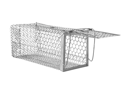 mesh: rat trap opened isolated on white background