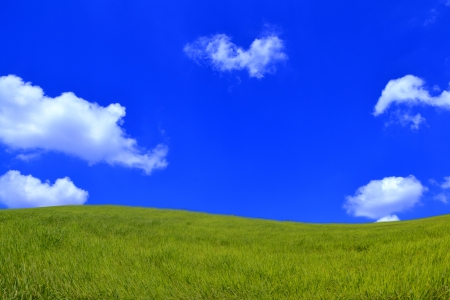 Green Grass and Sky photo