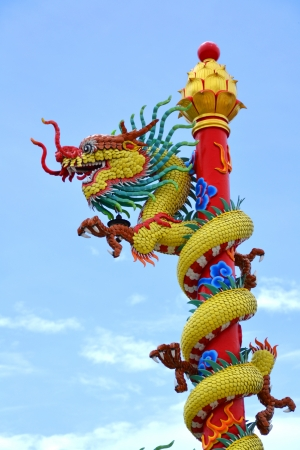 The Dragon photo