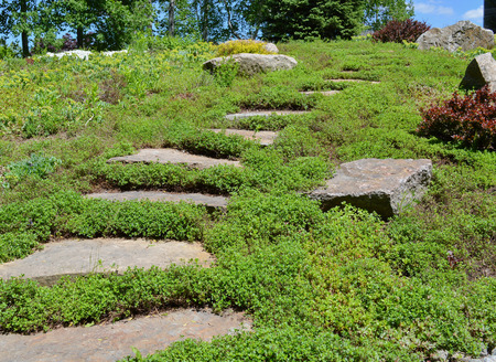 stepping: Rock slabs placed on the side of the hill to be used as stepping stones. Stock Photo