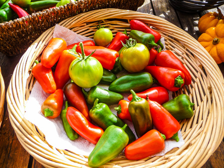 unripened: Variety of ripe and unripe homegrown tomatoes and capsicum