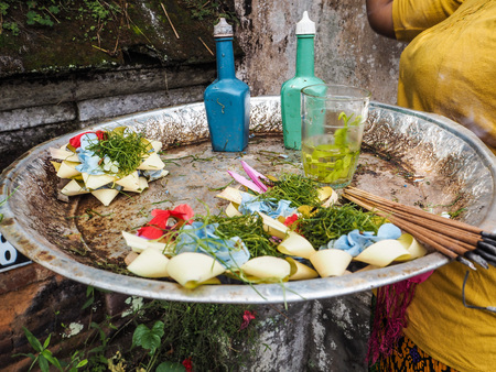 ubud: balinese woman holding a tray with offerings and new canang sari, Ubud, Bali
