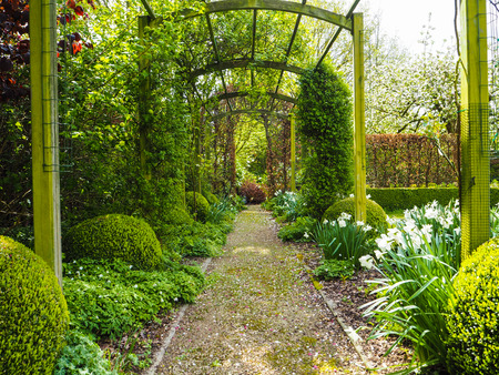 The entrance pergola to the garden during spring, flanked by white daffodils and crocuses and a blossoming apple tree in the back, Belgium