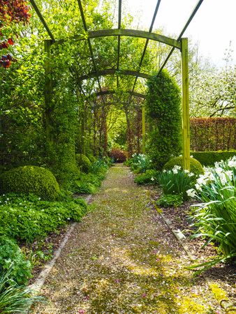 The entrance pergola to the garden during spring, flanked by white daffodils and crocuses, Belgium Stock Photo
