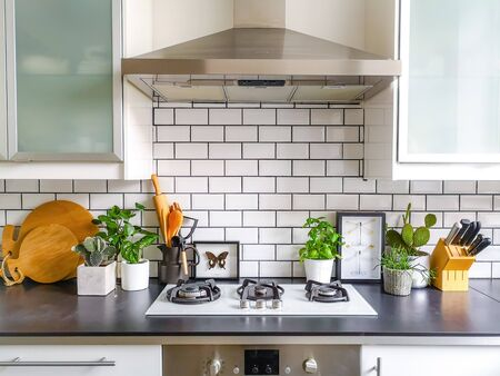 Cocina con azulejos de metro en blanco y negro con numerosas plantas y arte de insectos de taxidermia enmarcado Foto de archivo