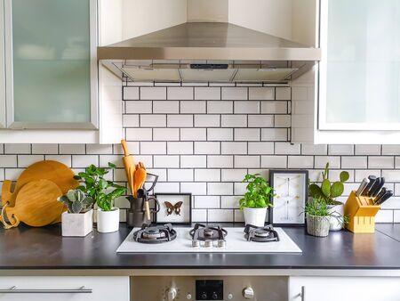 Schwarz-weiße U-Bahn-geflieste Küche mit zahlreichen Pflanzen und gerahmter Präparatoren-Insektenkunst Standard-Bild