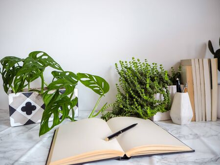 Bright white office interior with multiple plants and stationery products creating a relaxing work environment