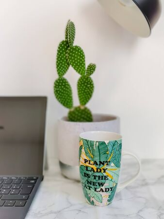 Ceramic mug with funny quote regarding a crazy plant lady in a workspace environment