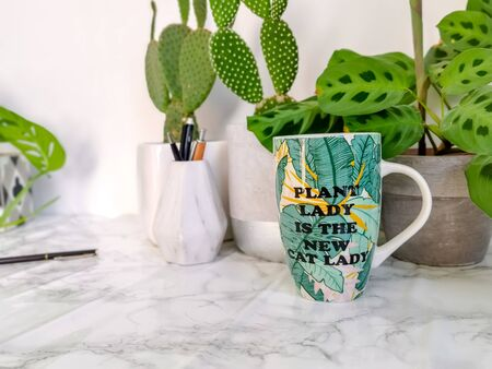 Ceramic mug with funny quote comparing plant addicted people to crazy cat ladies, on a work desk
