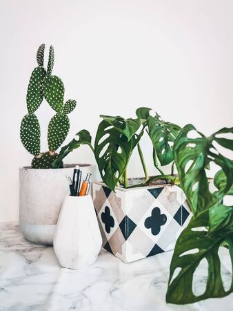 Clean white work desk with stationery and multiple green plants such as cacti and monkey mask plant for mental and physical well being at the office
