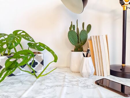 Home office desk with indoor plants such as a cactus and stationery on a white background, creating a relaxing work environment