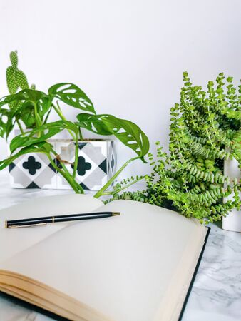 Multiple indoor plants and a blank notebook on a office desk in a bright white interior creating a no stress work environment