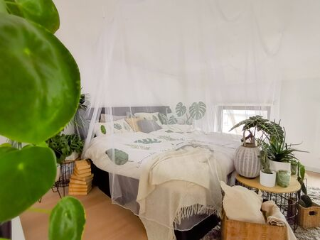 Bright white bedroom filled with numerous houseplants and flooded in natural light