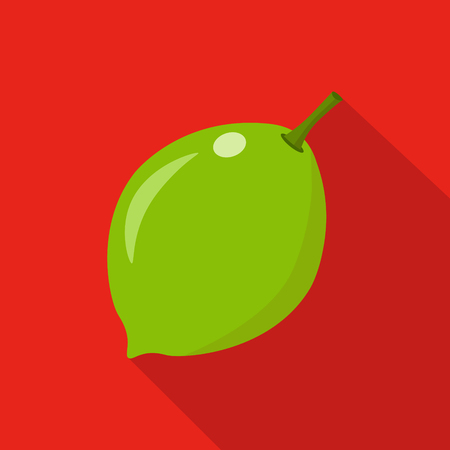 citric: lime flat icon vector illustration fresh fruits Illustration