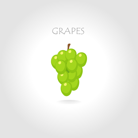 tittle: green grapes vector illustration with text tittle
