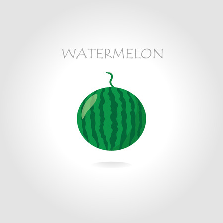 tittle: green watermelon vector illustration with text tittle