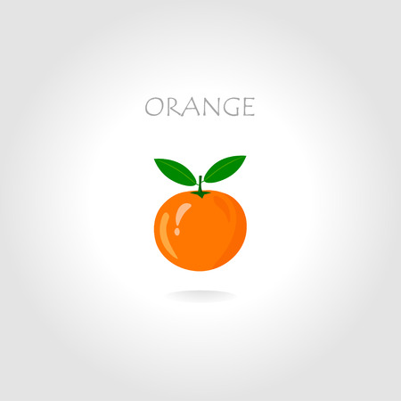 package design: fresh orange vector illustration with text title