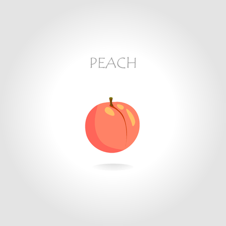fresh peach vector illustration with text title